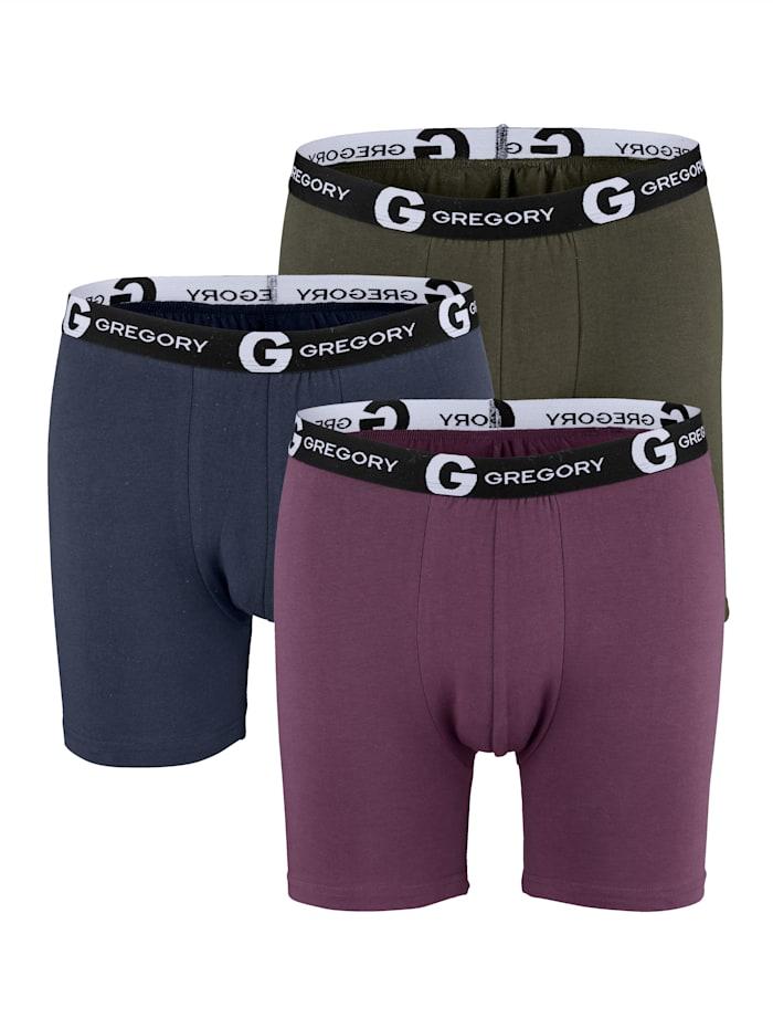 Pants in klassischen Farben 3er Pack