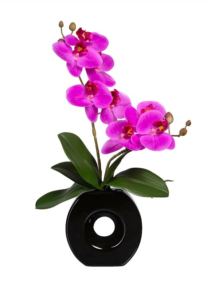 Globen Lighting Orchidee in moderner Vase, Lila