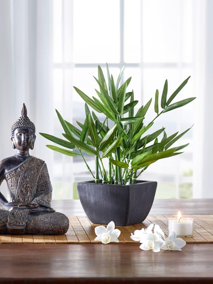 Dekopflanze Bambus, grün