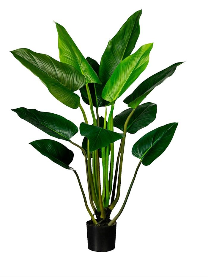 Globen Lighting Philodendron, Grün