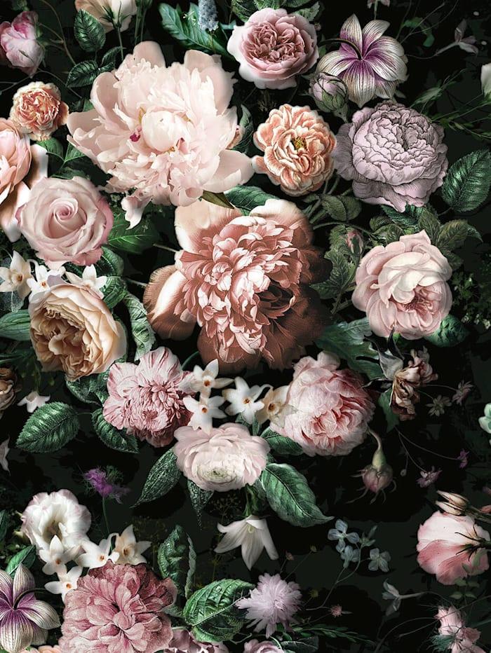 Komar Fototapete, Blumen, schwarz