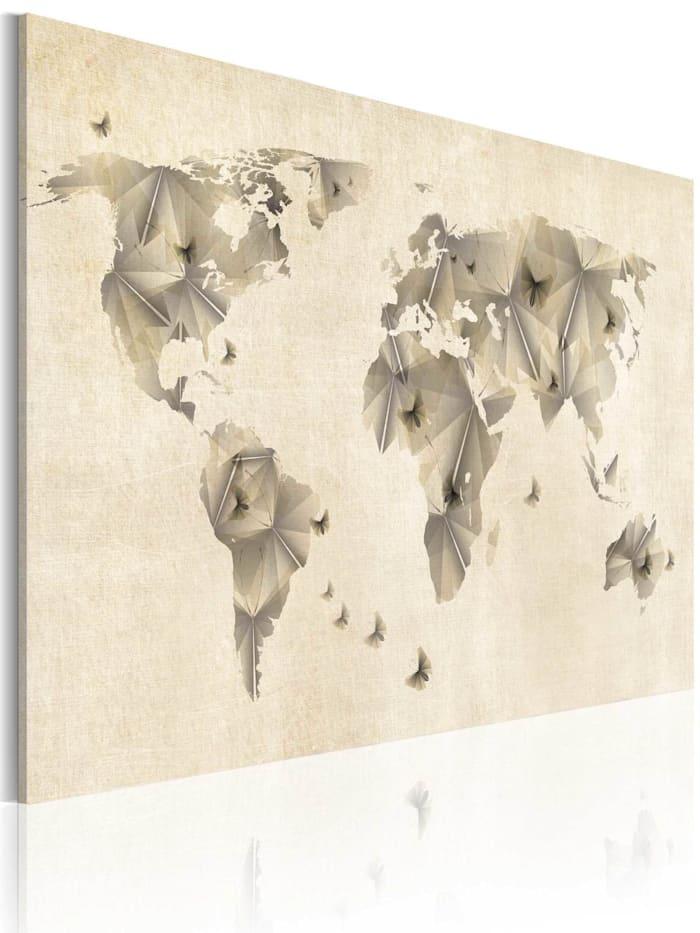 artgeist Wandbild Atlas der Schmetterlinge, Beige,Grau