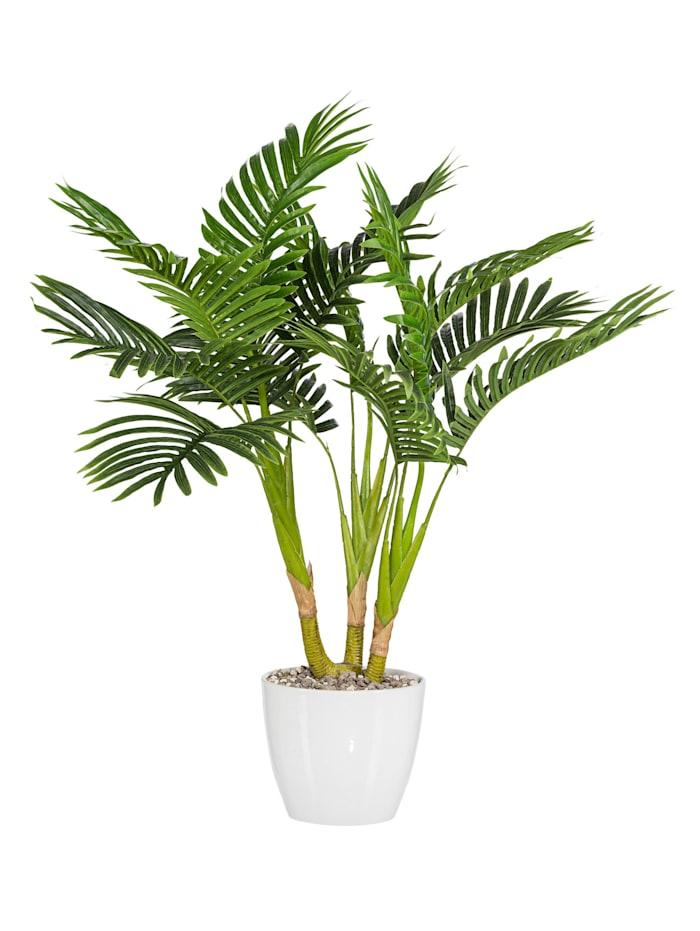 Globen Lighting Konstgjord växt, kentiapalm, Grön
