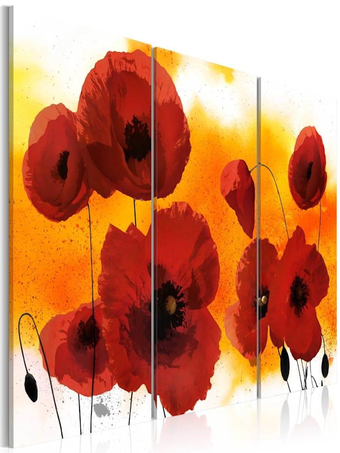 artgeist Wandbild Sunny afternoon and poppies, Rot,Weiß,Orange