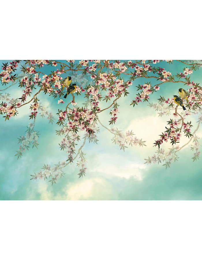 Komar Fototapete 'Sakura', Mehrfarbig