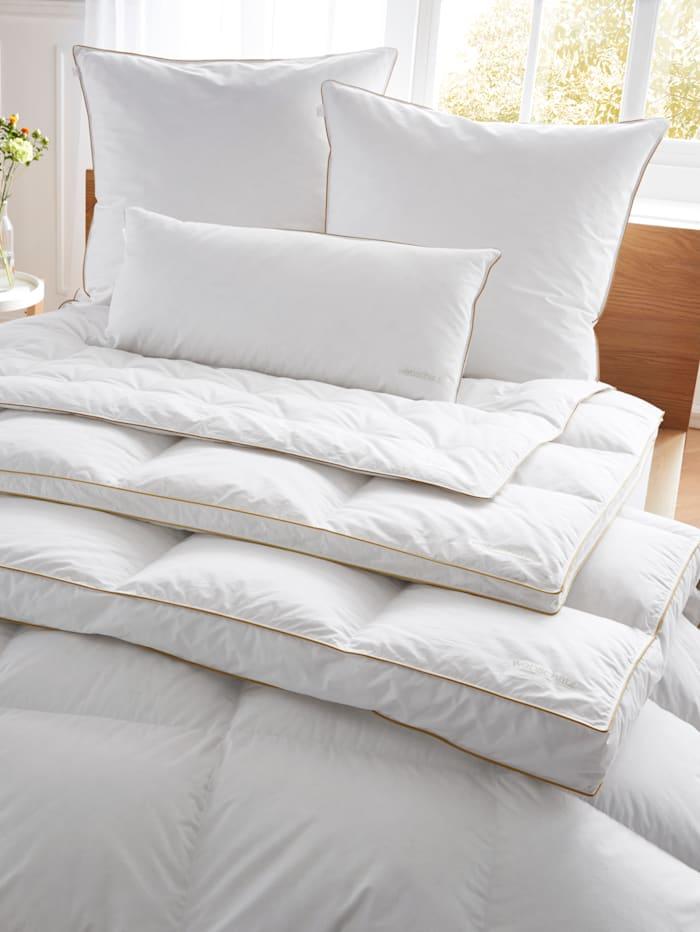 Webschatz Premium Daunen Bettenprogramm mit goldener Satin-Biese, weiß
