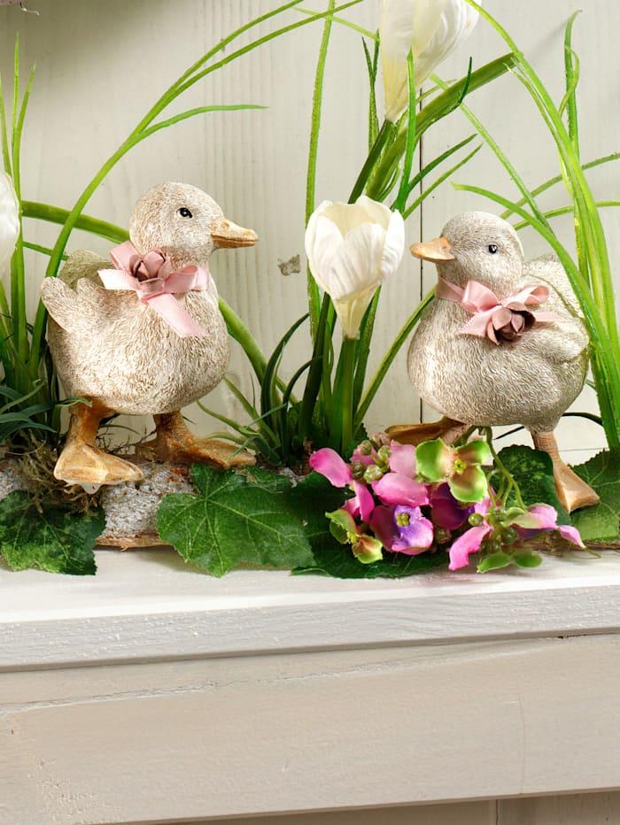 Arrangemang med fåglar