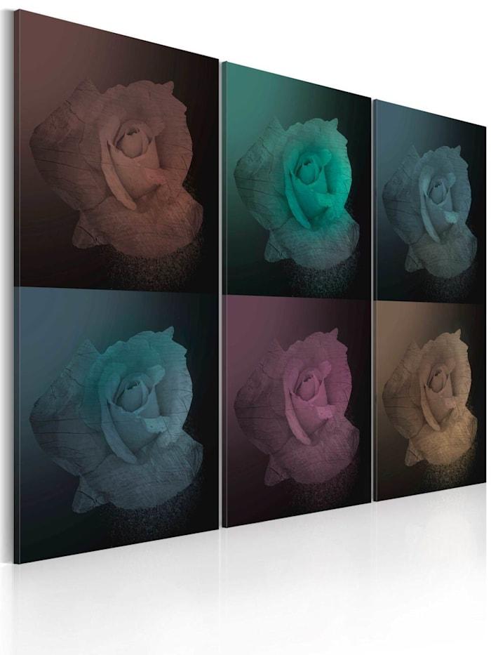 artgeist Wandbild Rose in sechs Versionen, colorful