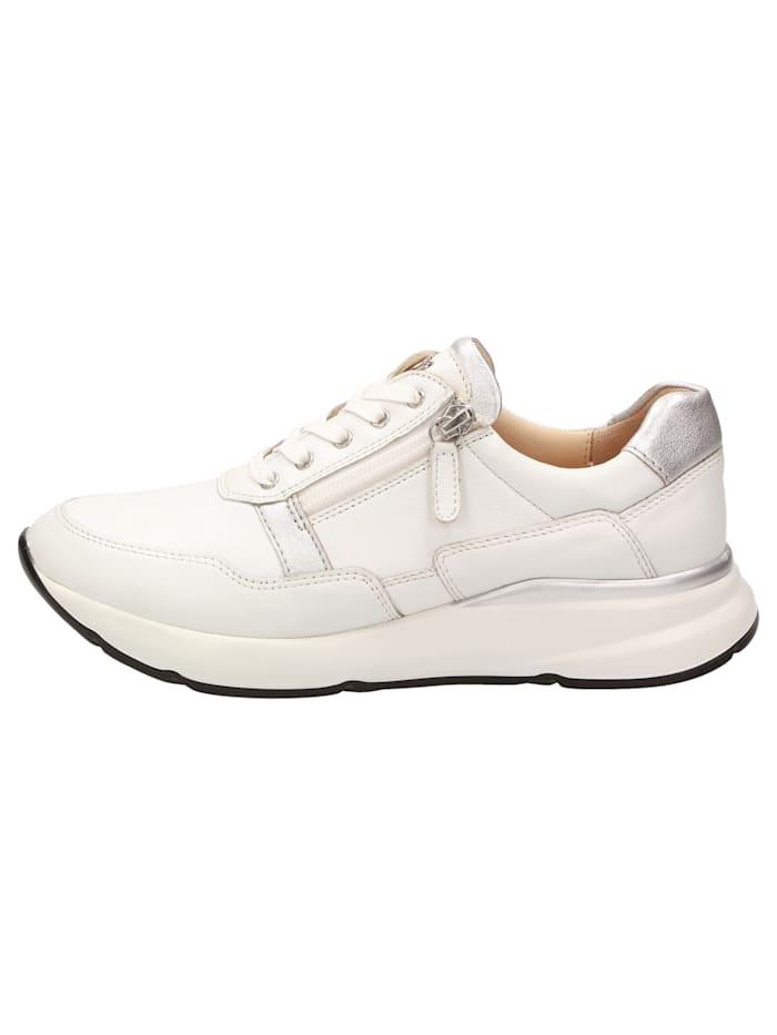Sneaker Segolia-701-J