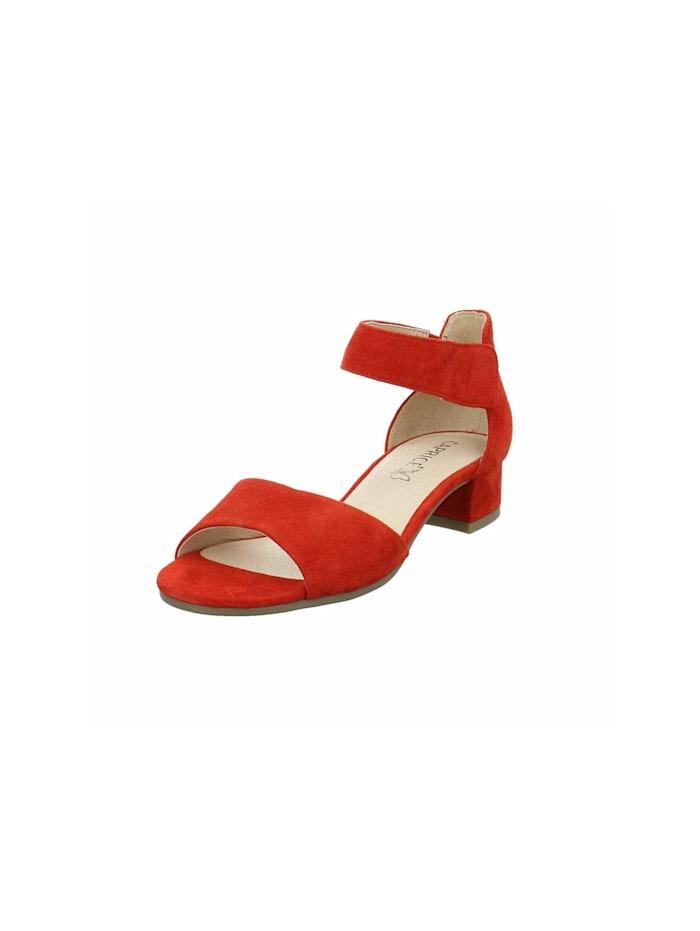 Caprice Sandalen/Sandaletten, rot