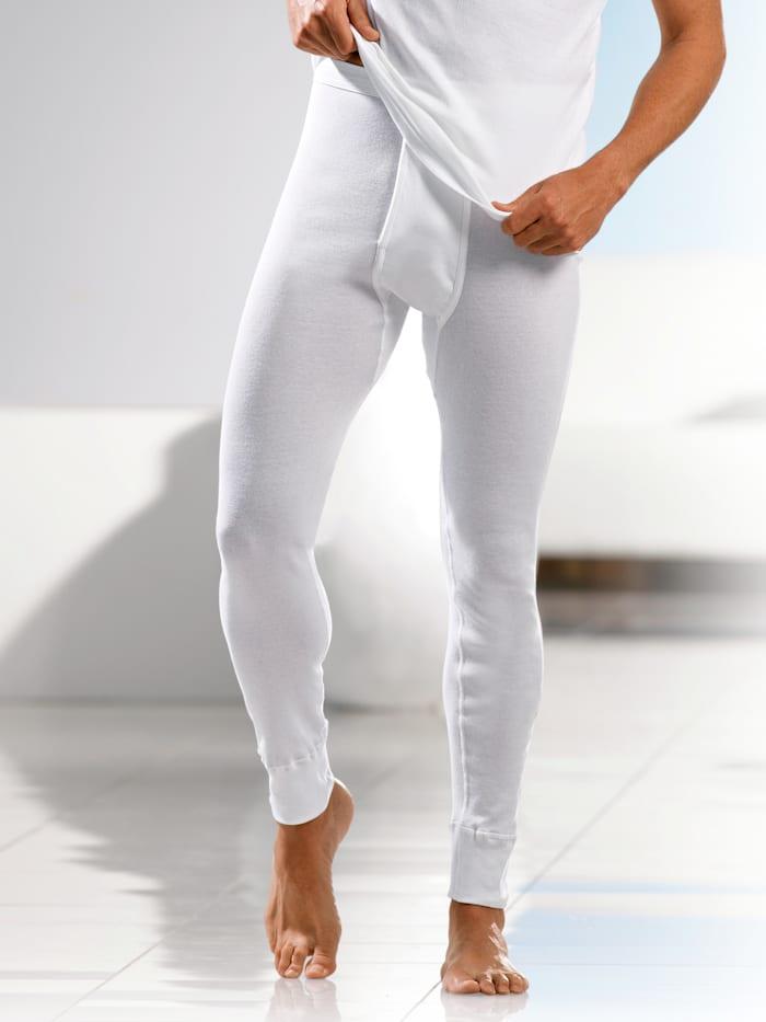 Pfeilring Unterhose mit elastischem Weichbund, Weiß
