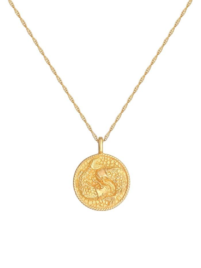Halskette Sternzeichen Fisch Astro Münze 925 Silber