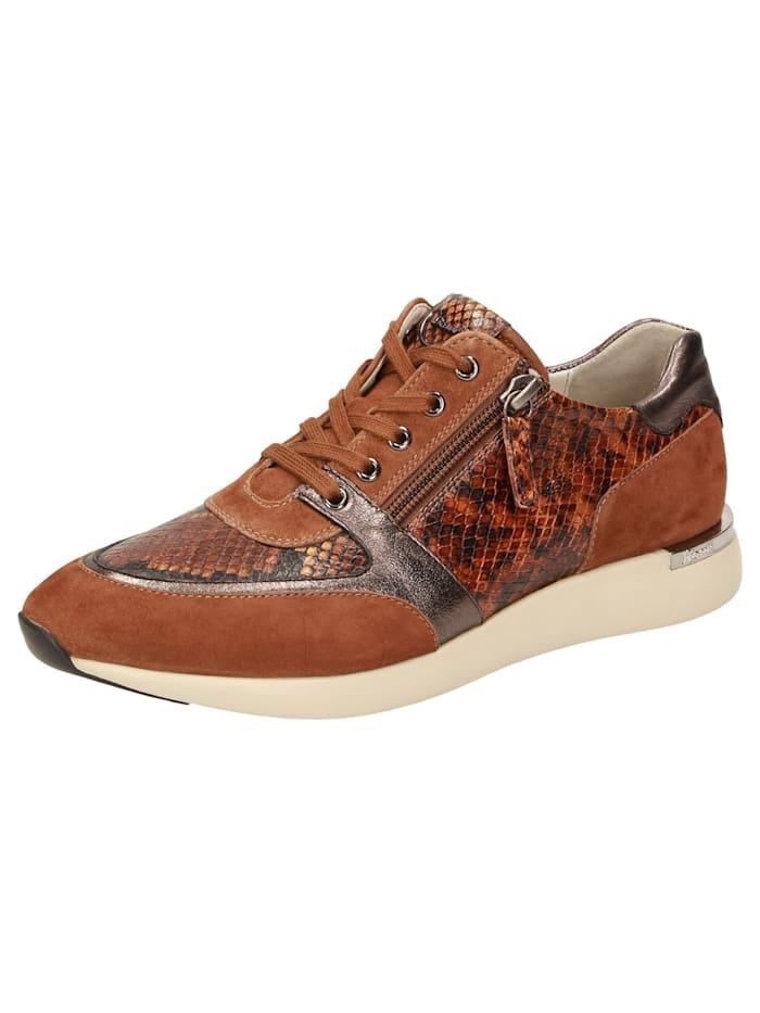 Sioux Sneaker Malosika-701, braun