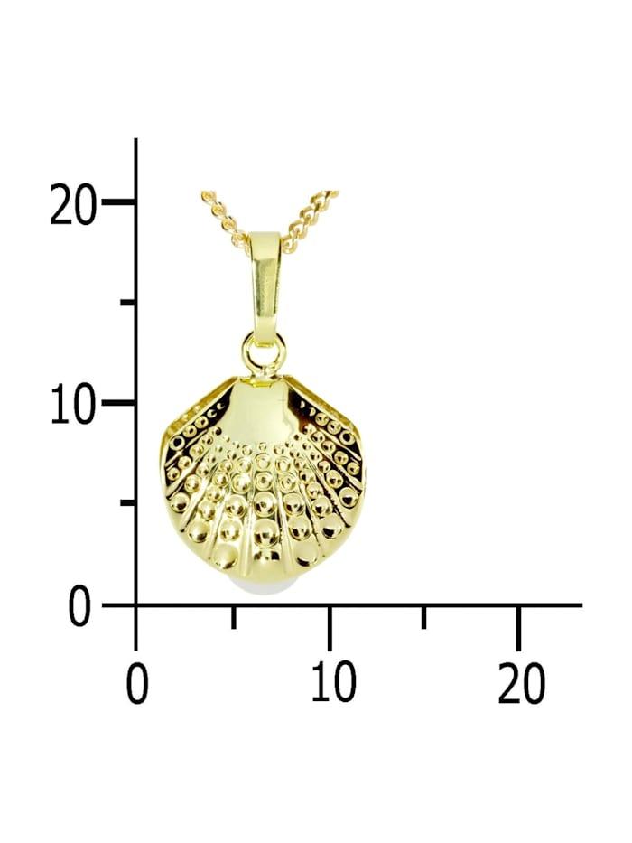 Kette mit Anhänger - Muschel - Gold 333/000 -