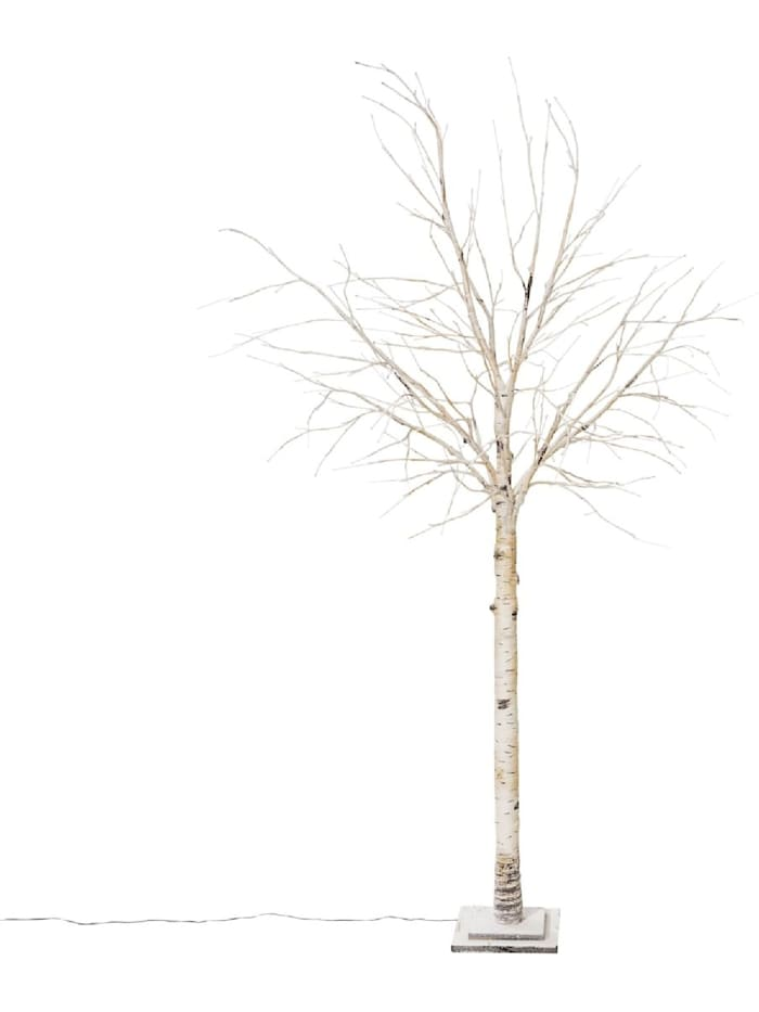 Living LED-Birke, Weiß
