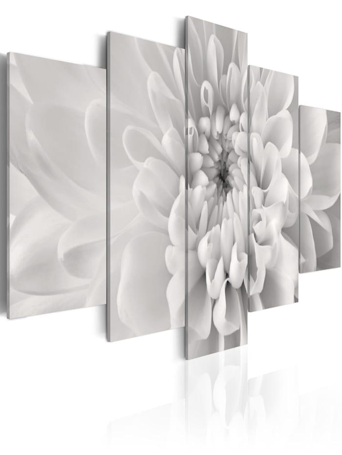 artgeist Wandbild Dahlie in Grautönen, schwarz-weiß