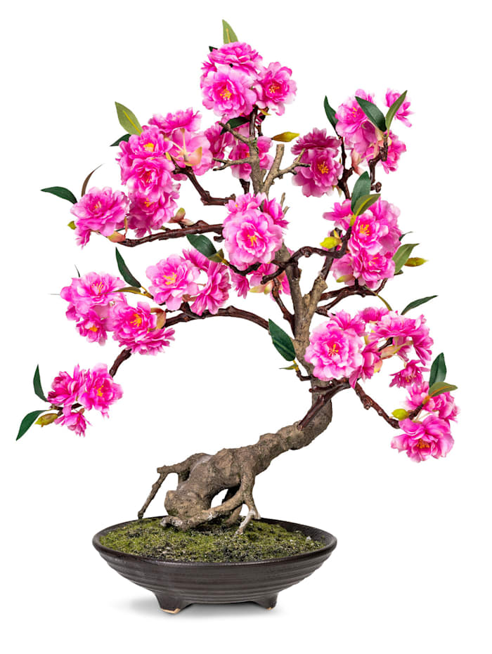 Globen Lighting Bonsai, Rosa
