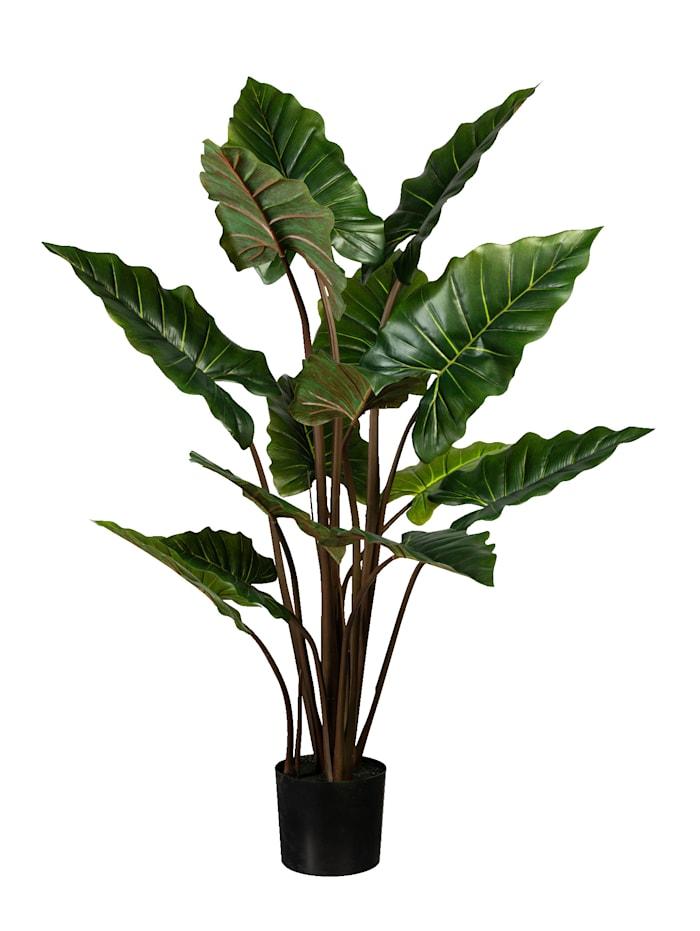 Globen Lighting Taropflanze, Grün