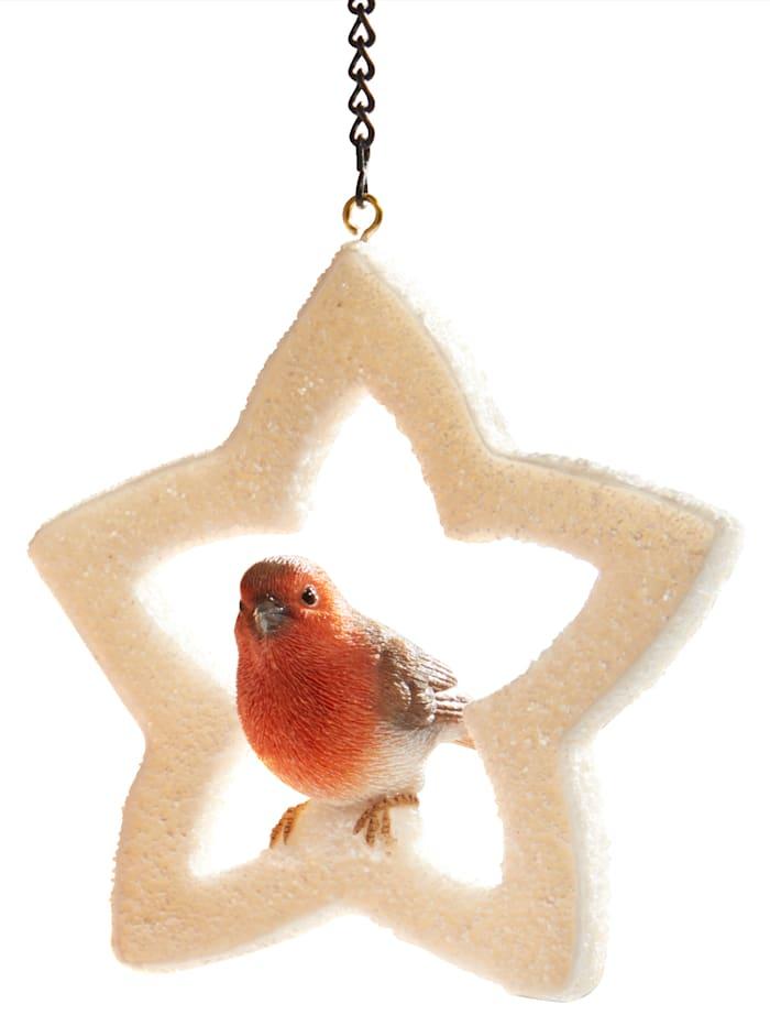Vogel in Weihnachtsstern