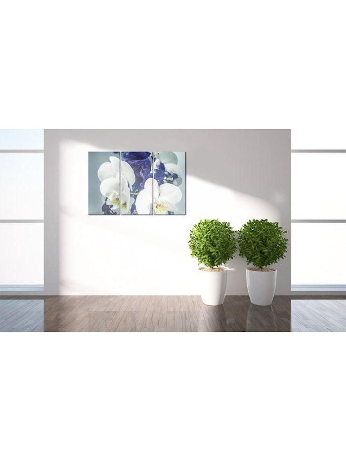 Wandbild Launische Orchideen