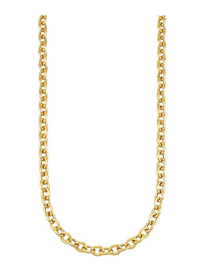 Diemer Highlights Halsband av ankarlänk i 14 k guld, Guldfärgad
