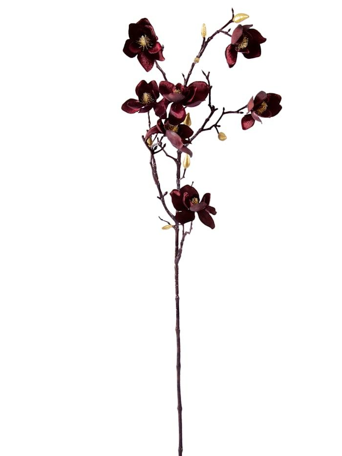 Gasper Magnolie, Samt, bordeaux/goldfarben