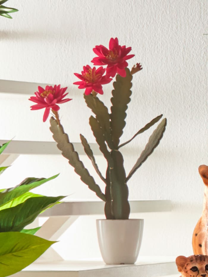 Konstgjord växt – kaktus med blommor, Röd