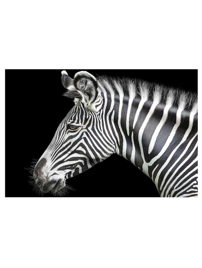 IMPRESSIONEN living Acrylglasbild, Zebra, Schwarz/Weiß
