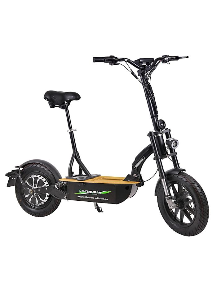 """DIDI THURAU EDITION Elektroroller """"Eco-Tourer"""" 20 km/h Safety mit Schlüsselschalter, Tachometer und und Rückspiegel"""