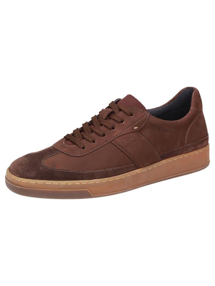 Sioux Sneaker Horvig-702, braun