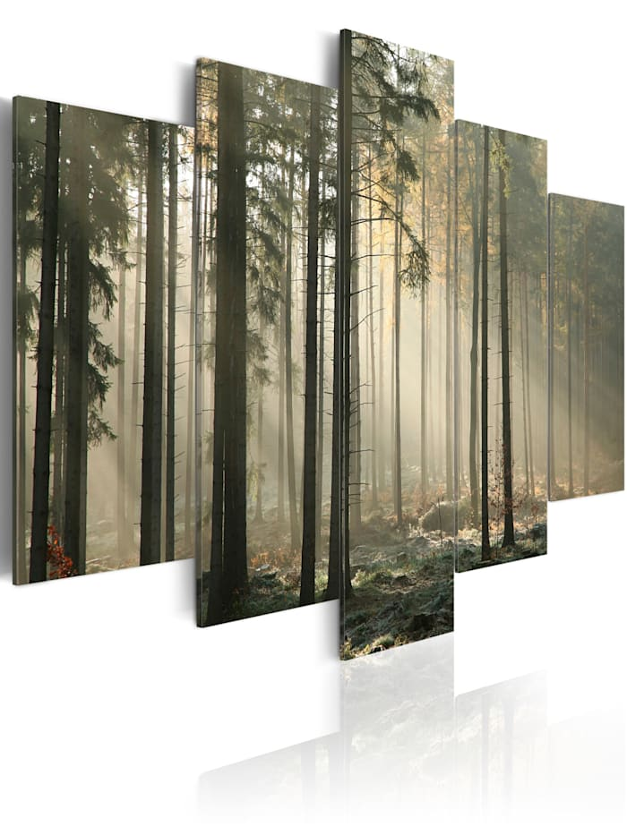 artgeist Wandbild Lichtschimmer im dunklen Wald, Grau,Grün,Braun