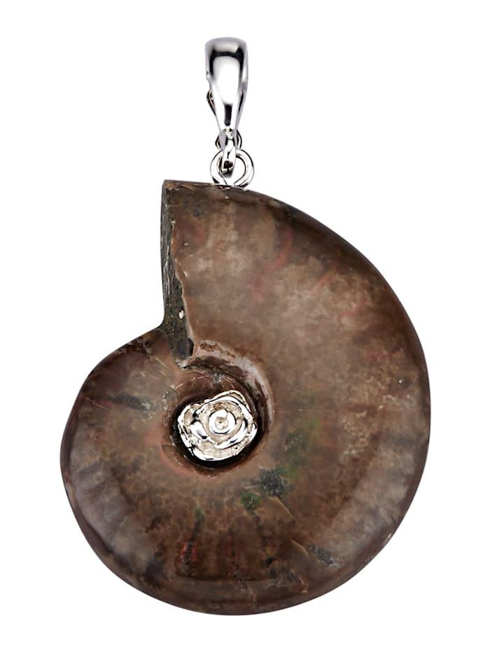Diemer Highlights Clip-Anhänger mit Ammonit, Braun
