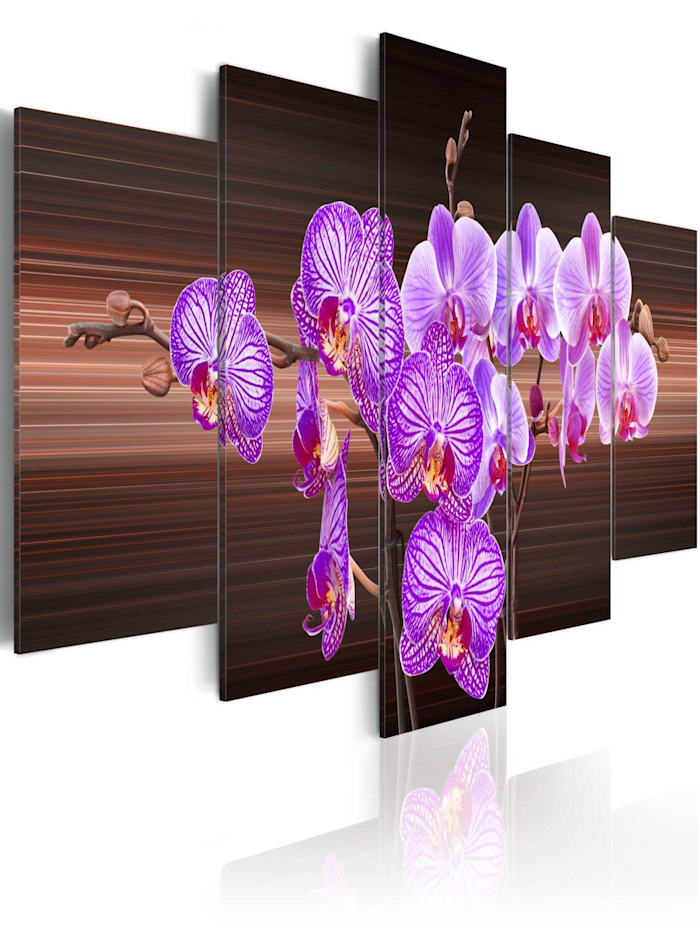 artgeist Wandbild Flower of joy, Braun,Violett,Weiß