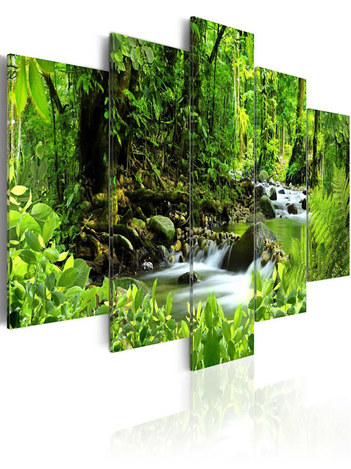 artgeist Wandbild In the mighty jungle..., black,green,white