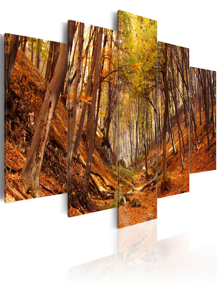 artgeist Wandbild Herbst in Orange, Braun,Grün,Orange