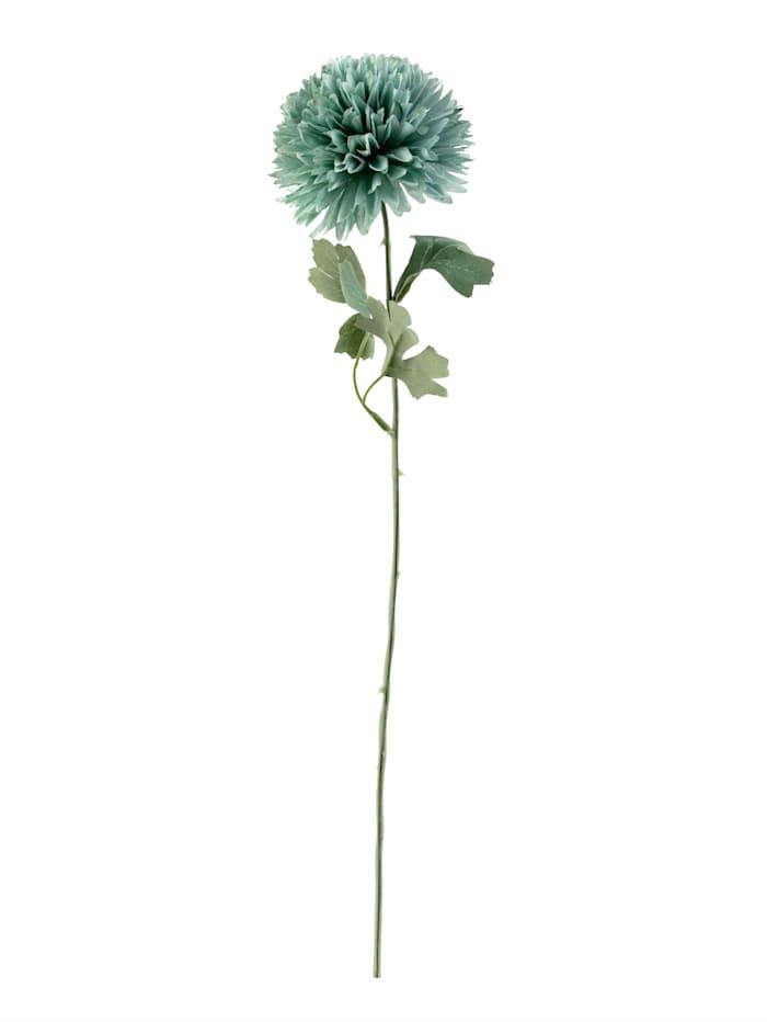 IMPRESSIONEN living Deko-Blumen, grün