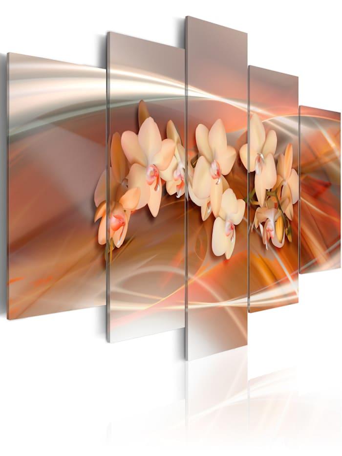 artgeist Wandbild Orchidee in warmen Grautönen, Weiß,Braun,Creme,Grau,Orange