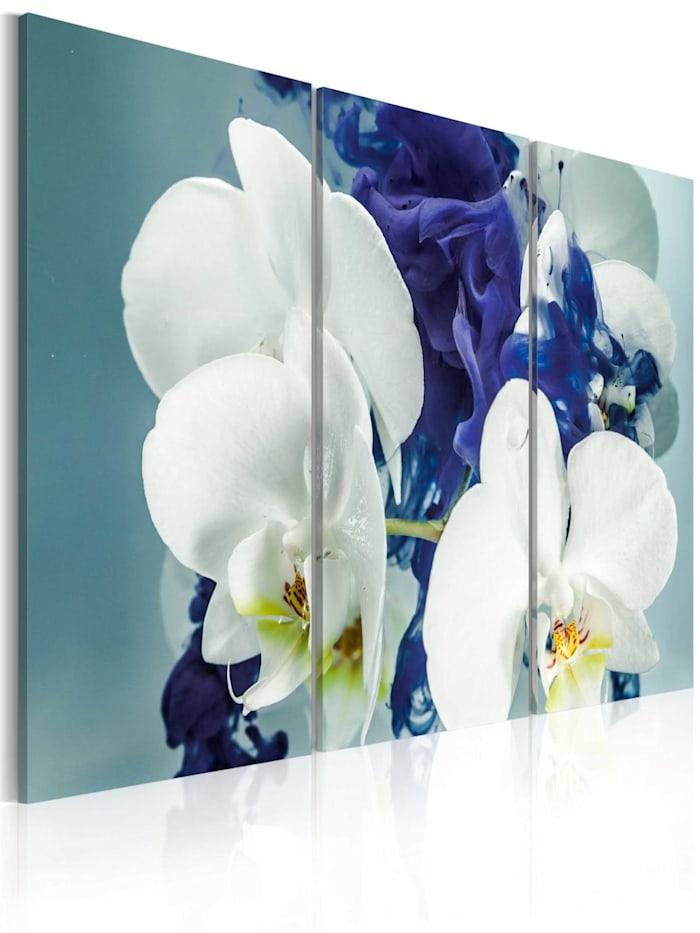 artgeist Wandbild Launische Orchideen, Blau,Weiß,Gelb