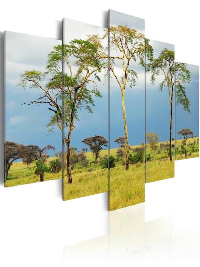 artgeist Wandbild Die Natur in Afrika, brown,green,blue