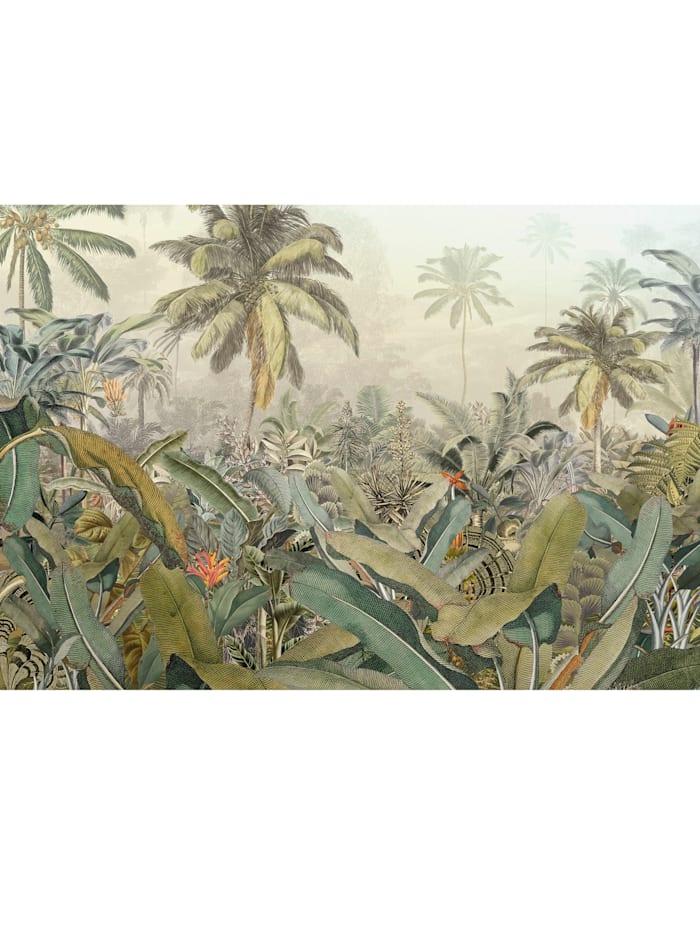 Komar Fototapete 'Amazonia', Mehrfarbig