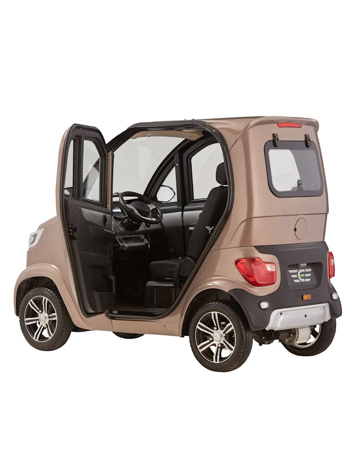 4-Rad eLazzy Premium 45 km/h Mit Vor-Ort-Einweisung, Terra Platinum