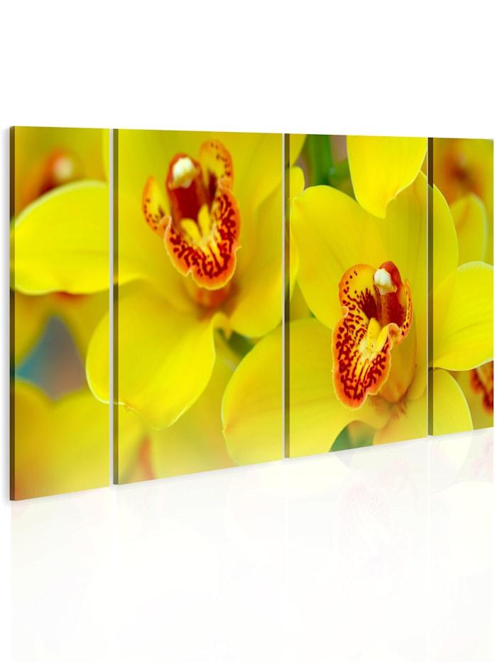 artgeist Wandbild Orchids - intensity of yellow color, Gelb