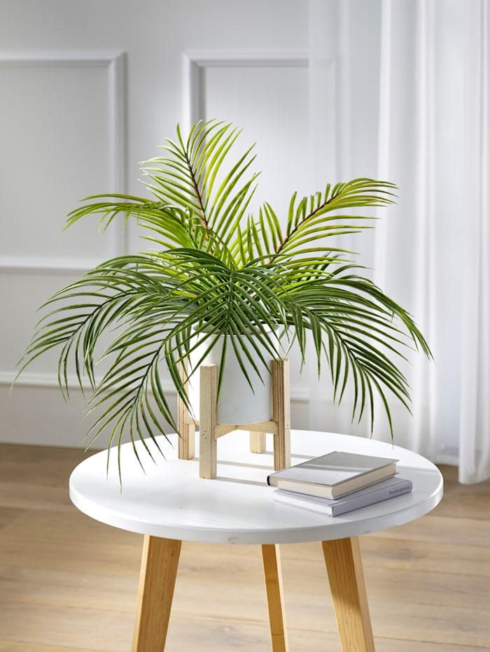 Palmu jalallisessa ruukussa, tekokukka, Vihreä