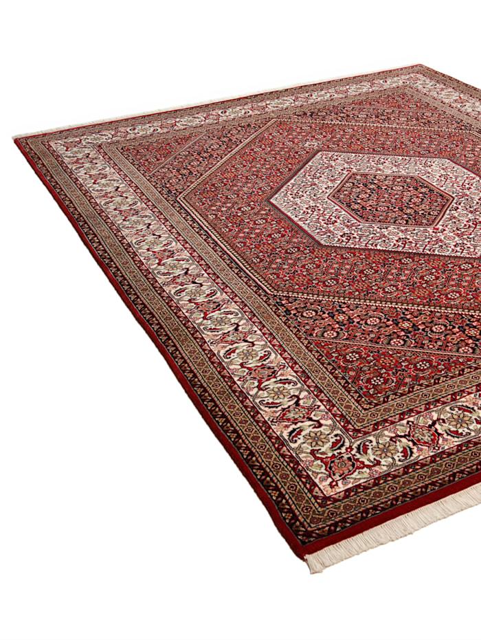 Orientteppich Rajesh