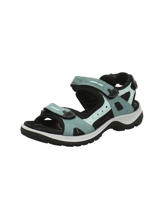 Ecco Sandalen/Sandaletten, grün
