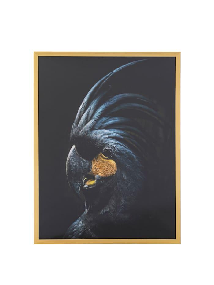 IMPRESSIONEN living Bild, Kakadu, schwarz/blau/gelb
