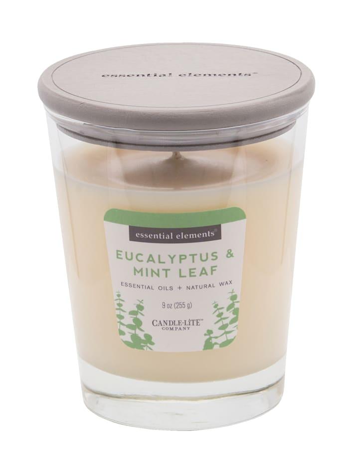 Candle-Lite Duftkerze Eukalyptus, weiß