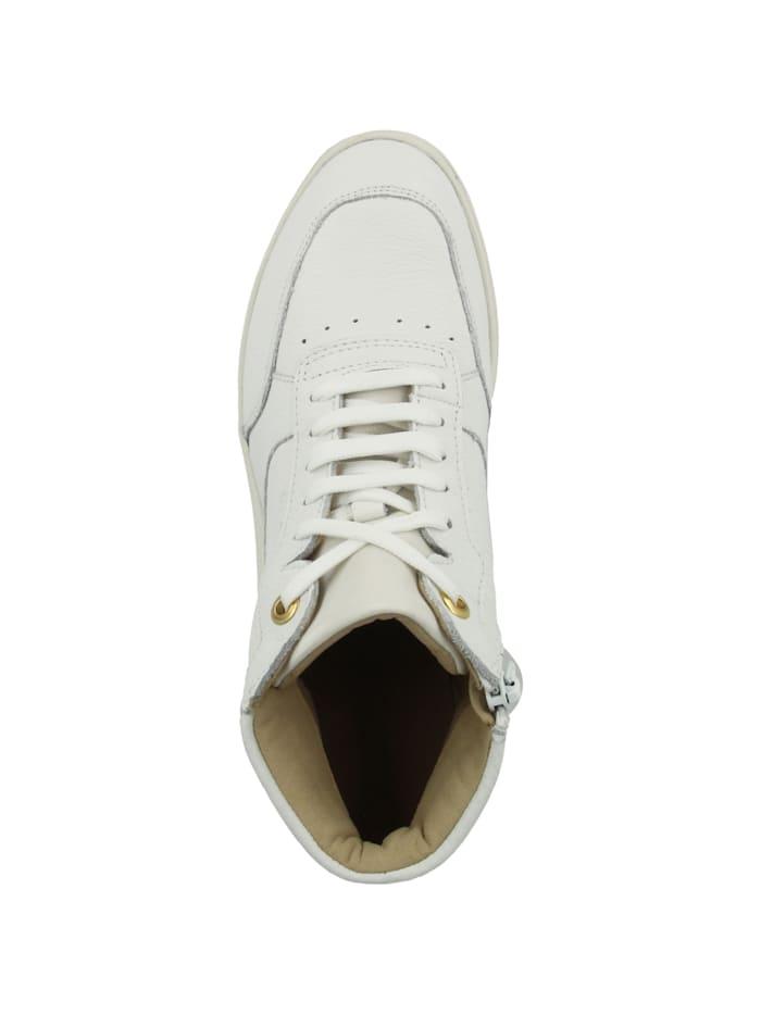 Sneaker mid D Rubidia B