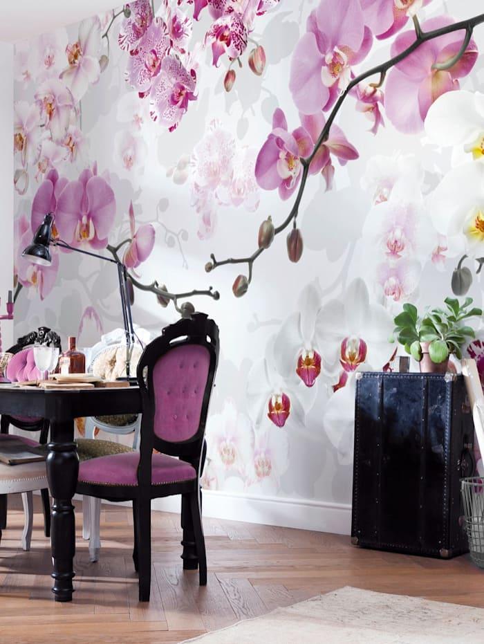Komar Fotobehang Orchidee, Multicolor