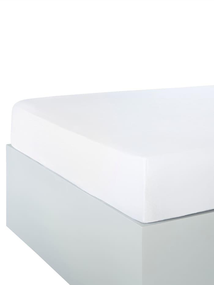 Webschatz Jersey Spannbettlaken, Weiß